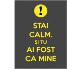 """Sticker """"Stai calm. Si tu ai fost ca mine"""""""